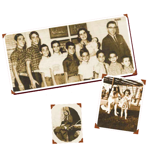 Viggianos-Family